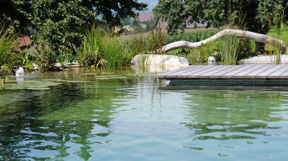Gartenplanung Und Gartenarchitektur - Region Luzern - Zug